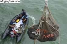 Evakuasi 4 jenasah AirAsia, 3 perempuan dan 1 laki-laki.